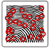 How a Fingerprint Biometric Time Clock Works: Step 2